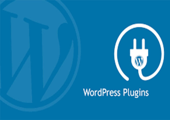 What is WordPress Plugin? How to Install Them?
